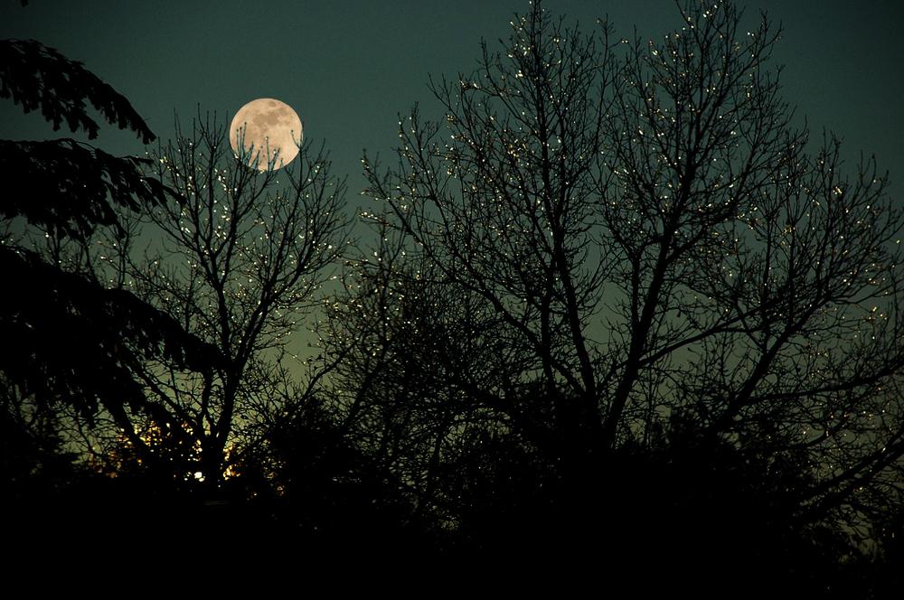 Randonnée en raquettes à la pleine lune à Saint-Côme